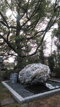 成海神社に奉納されたさざれ石